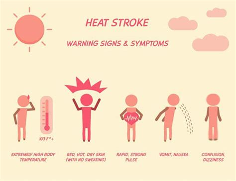 heat stroke signs how to spot signs and prevent heat exhaustion heat stroke survival