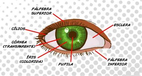 faa os detalhes de boca e olhos com a caneta permanente preta e detalhes do rosto olho nerds do fund 227 o