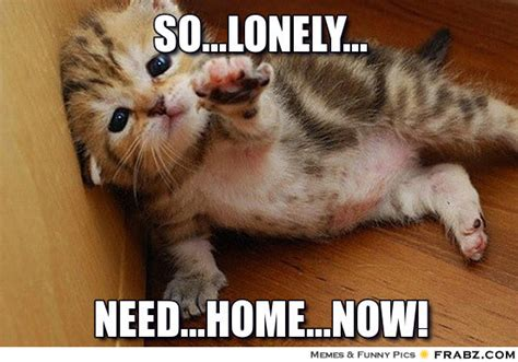 Lonely Meme - lonely memes image memes at relatably com