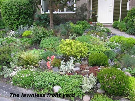 triyae easy low maintenance backyard landscaping