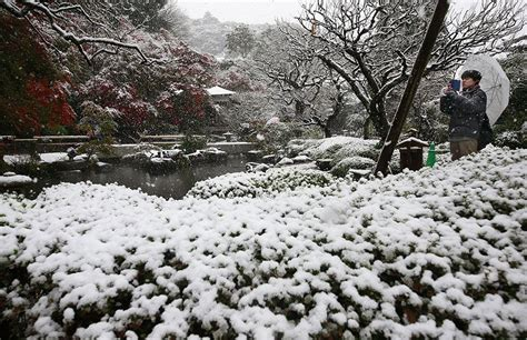 november tokyo 13 beautiful photos of the first november tokyo snow since