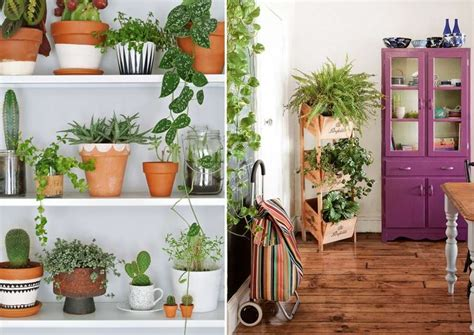 indoor planter ideas 10 incredible indoor plant container ideas