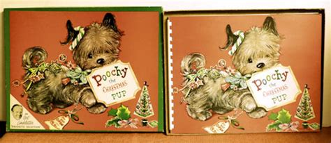 poochy the pup with box by beth vardon