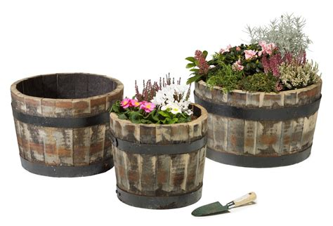 Oak Barrel Planter by Rustic Oak Barrel Planter Large H33cm X D54cm 163 34 99