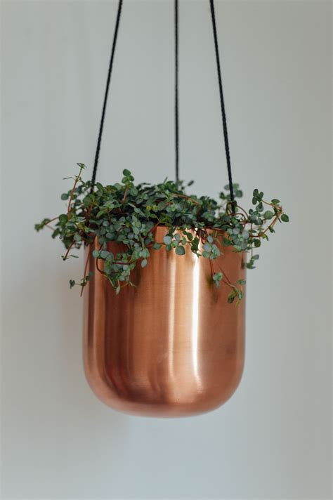 Copper Hanging Planter by Copper Hanging Planter Birdie