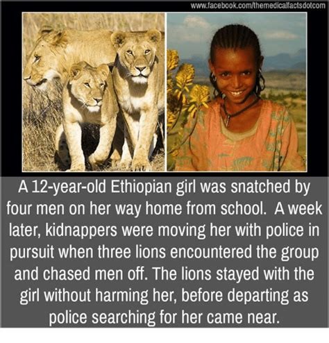 Ethiopian Meme - 25 best memes about ethiopians ethiopians memes