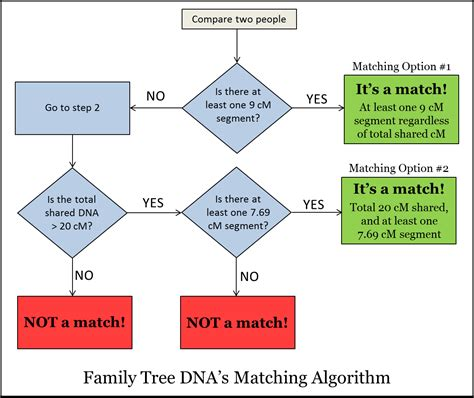 a simple tree pattern matching algorithm mitochondrial dna dnaexplained genetic genealogy