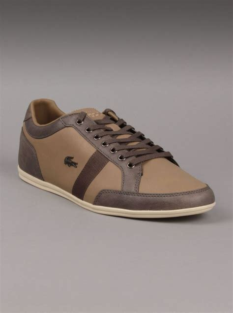 Sepatu Lacoste By Pinor Collection 43 best images about shoes on sporty s