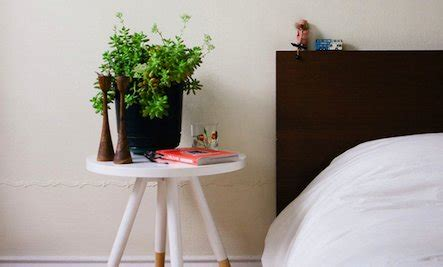 good plants to have in your bedroom is it good or bad to have plants in the bedrooms