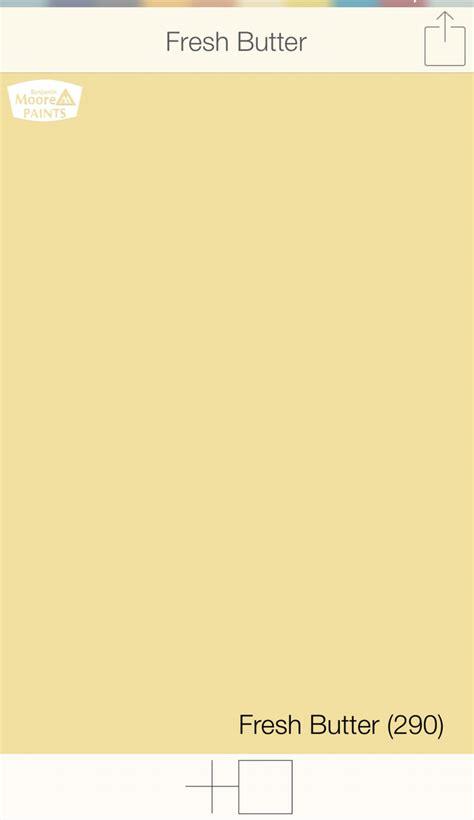 magnificent benjamin front door colors yellow front