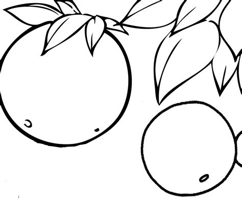 fruit coloring pages lemons fruit coloring pages to learn to coloring