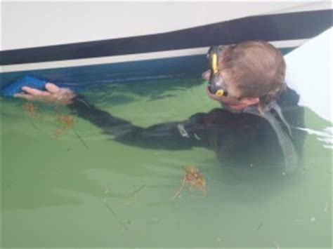 underwater hull cleaning diving services bottoms props - Boat Bottom Cleaning Key West