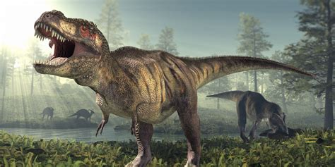 t rex gnawed t rex fossil hints at dino cannibalism slashgear