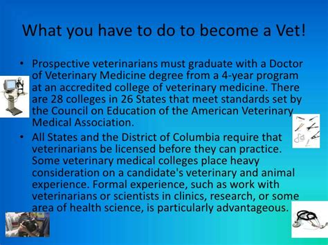 what does being a a veterinarian