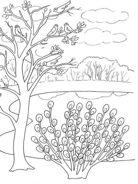 coloring pages spring nature spring coloring pages download and print spring coloring