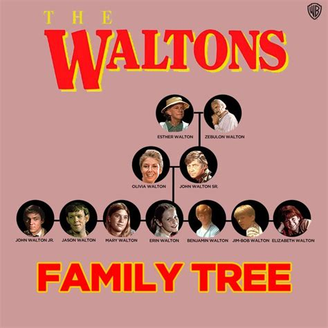 full house family tree 37 best images about all things wb on pinterest crime brother and stars hollow