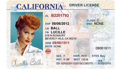 Template Drivers License california driver s license editable psd template