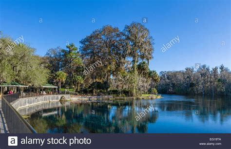glass bottom boat tours ta florida silver river state park florida stock photos silver