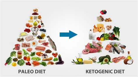 the keto paleo kitchen the easy way to shift your diet ratios for term weight loss books keto food pyramid 2017 best food 2017