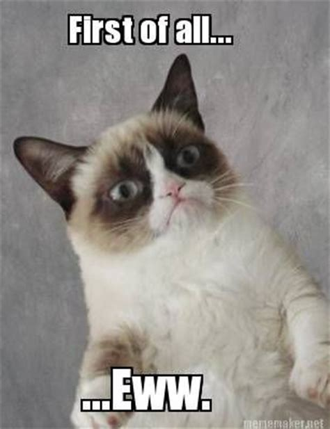 Eww Face Meme - eww means nope grumpy cat mean memes grumpy cat pinterest cats satan and funny