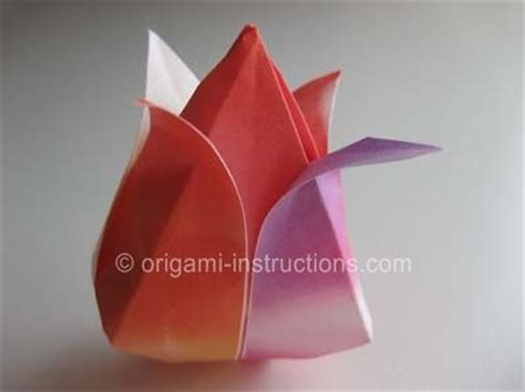 How To Make An Origami Tulip - 17 best images about origami flowers on