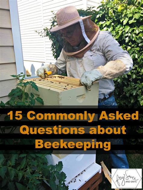 can i raise bees in my backyard 25 best ideas about backyard beekeeping on pinterest