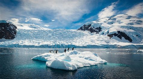 image facts paradise frozen 10 antarctica facts and photos