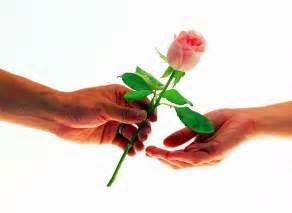 Rosas de amor related keywords amp suggestions rosas de amor long tail
