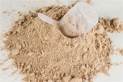 protein powder protein powder 10 foods every healthy kitchen needs