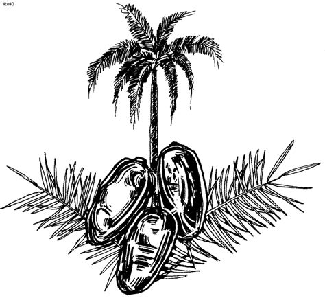 date tree coloring page date palm coloring pages download and print for free