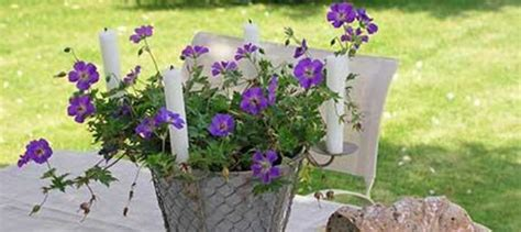 cottage garden accessories cottage garden d 233 cor the worm that turned revitalising