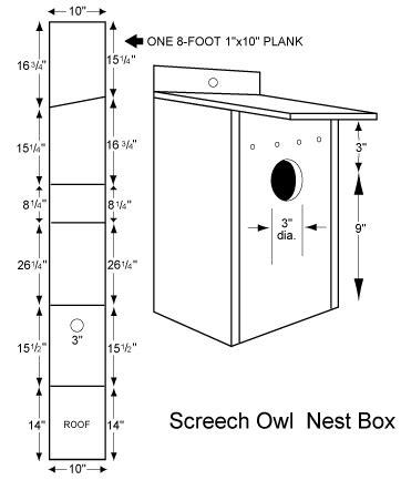 Screech Owl House Plans Pix Screech Owl