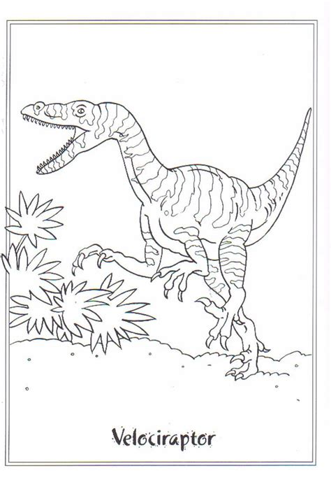 coloring page dinosaurs  velociraptor coloring