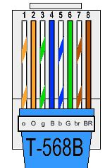 cat5e t568b wiring diagram cat5e get free image about wiring diagram