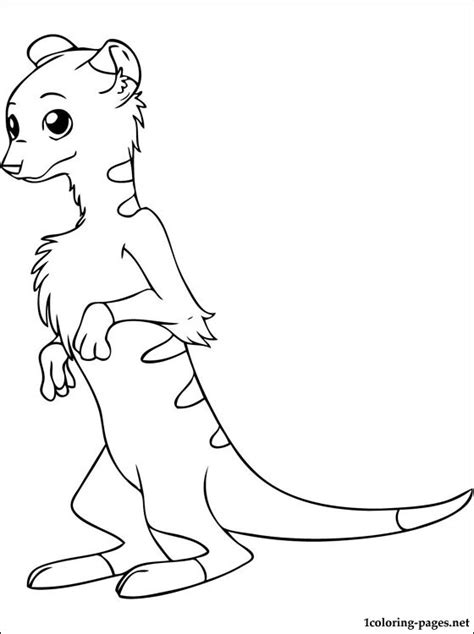 Meerkat Coloring Page Coloring Pages Meerkat Colouring Pages
