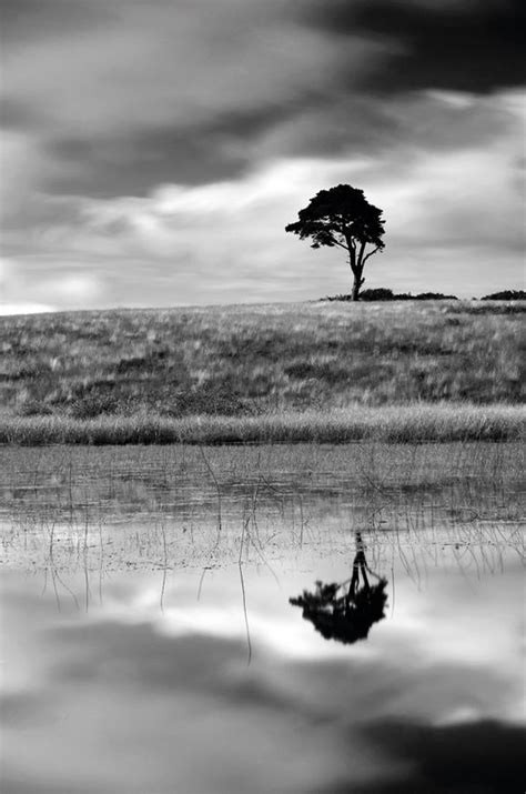 Black And White Landscape Photography Quotes Best 25 Ansel Ideas On