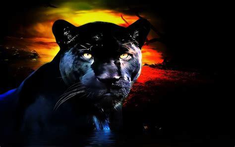 black panther animal desktop wallpaper panther wallpaper and background 1280x800 id 256757