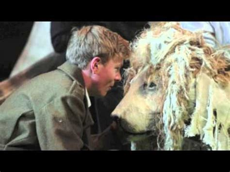 film butterfly lion the butterfly lion book trailer youtube