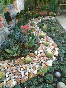 Do Aloe Plants Need Sunlight 15 delightful succulent gardens that will inspire you
