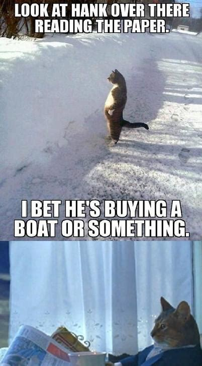 Cat Meme I Should Buy A Boat - image 579495 i should buy a boat cat know your meme