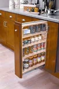 Kitchen Cabinet Spice Rack Organizer by Kitchen Cabinet Organizers Organizing Solutions In