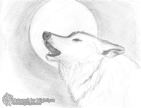 Sketches Wolf by Howling Wolf Sketches