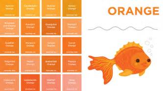 how to make the color orange pantone colors a board book for designer geeks wired