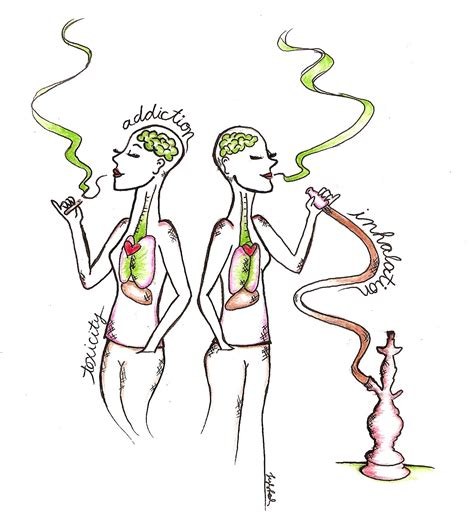 is hookah better than cigarettes for you research shows that hookah is as bad as regular cigarettes