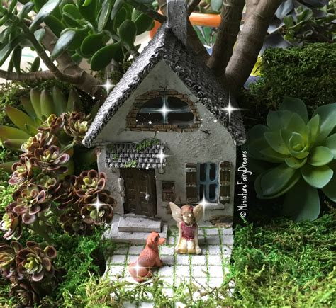 buy a fairy house garden fairy house where to buy miniature and fairy garden houses part i lush