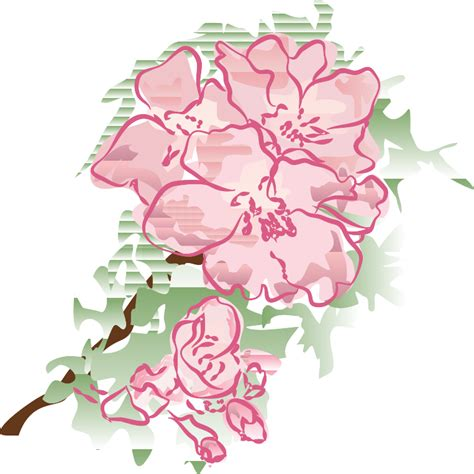 decorative flower decorative flowers clipart 69