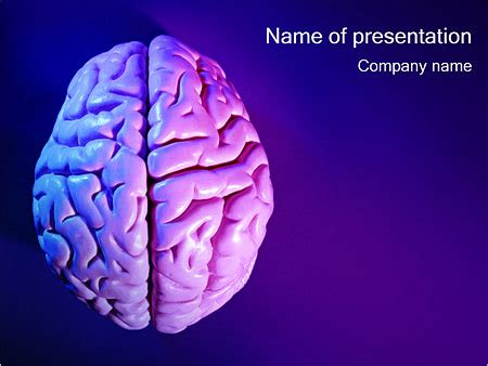 brain powerpoint templates free brain powerpoint template backgrounds id 0000000359