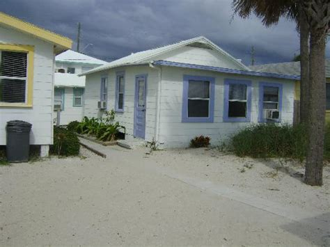 seahorse cottages treasure island seahorse from the picture of seahorse cottages treasure island tripadvisor