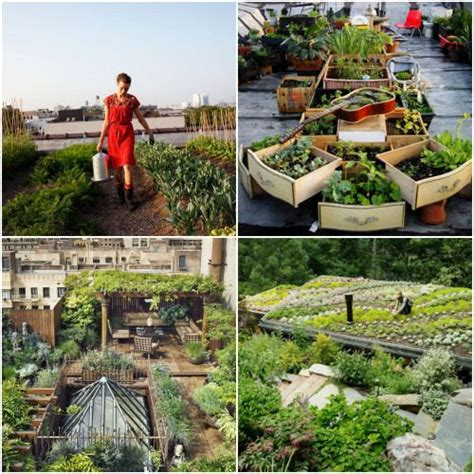 Just Two Fabulous Roof Gardens by 4 Differeant Roof Top Gardens A Fabulous Use Of