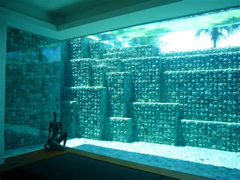 garden swimming pool custom dream homes stony wall see through swimming pools reveal a world full of surprises